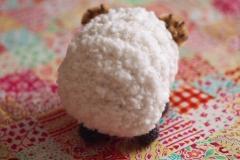 sheep4