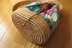 andaria and madras check bag1