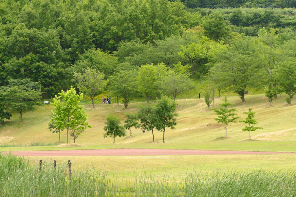新潟県立植物園4:LUMIX DMC-FZ1000