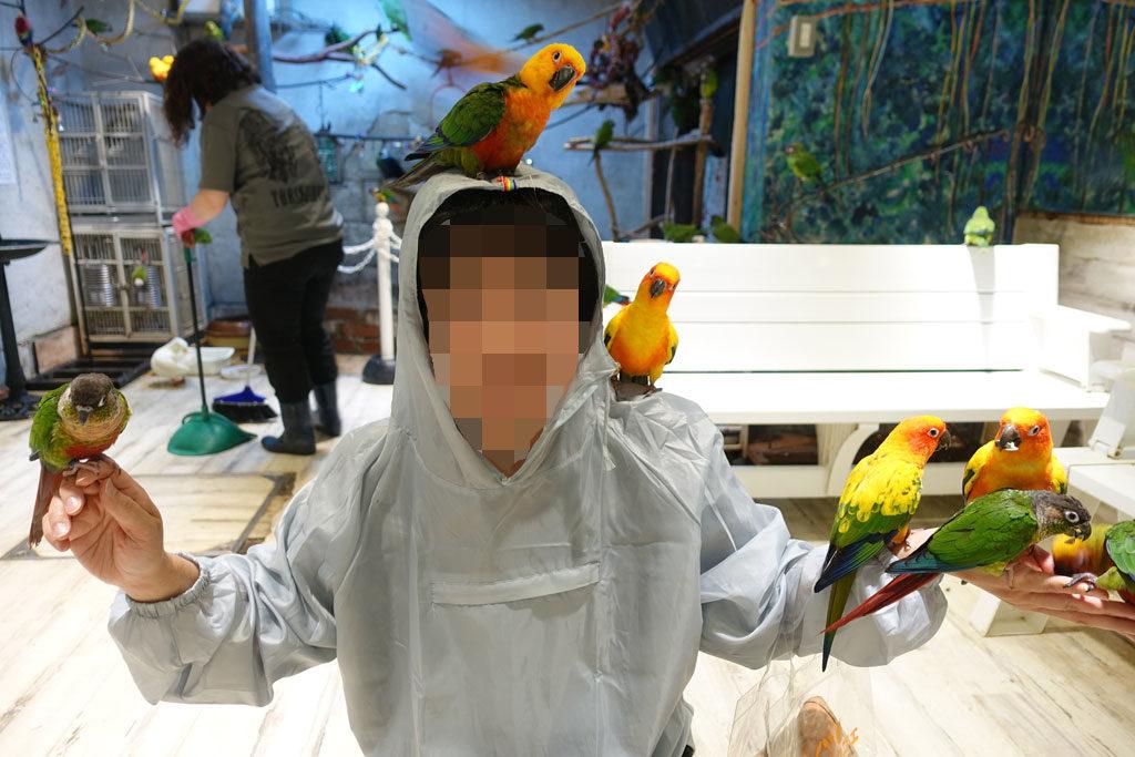 鳥のいるカフェ浅草店7:DSC-RX100M3