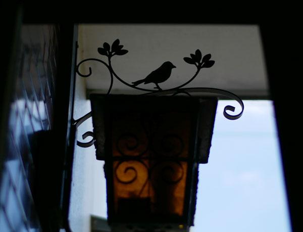 小鳥のアイアンブラケット8