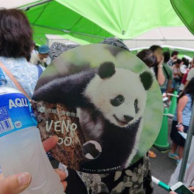 上野動物園うちわ